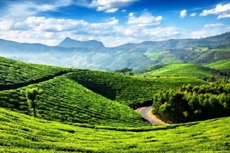 Which Indian Destinations are the Best For Spending Summers?  - Get The Best Travel, Tips & Information : powered by Doodlekit