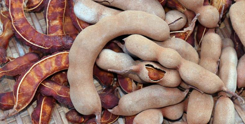 Tamarind Nutrition Facts and Health Benefits   SatWiky