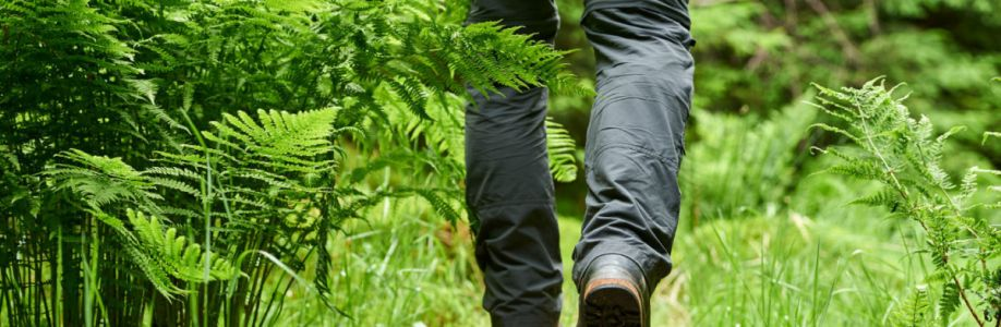 Best Rated Hiking Pants - TheKingLive.com Cover Image