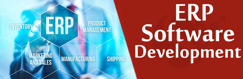ERP Software Development Services Cover Image