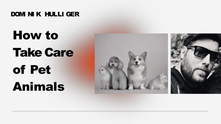 Dominik hulliger | how to take care of pet animals-ppt