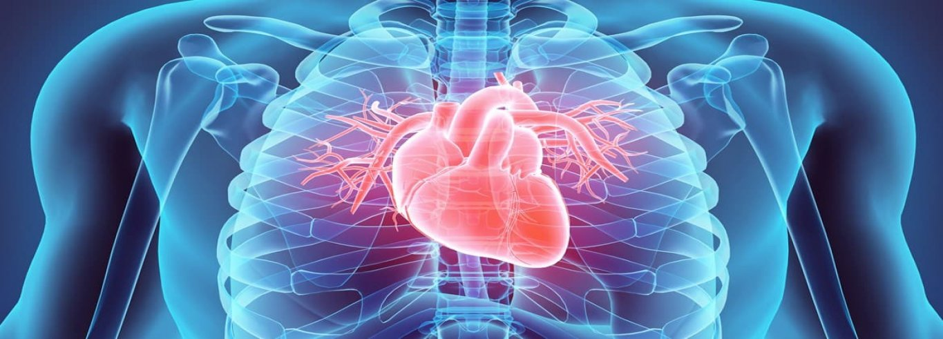 Stem Cell Therapy for Heart Transplant in Delhi, India
