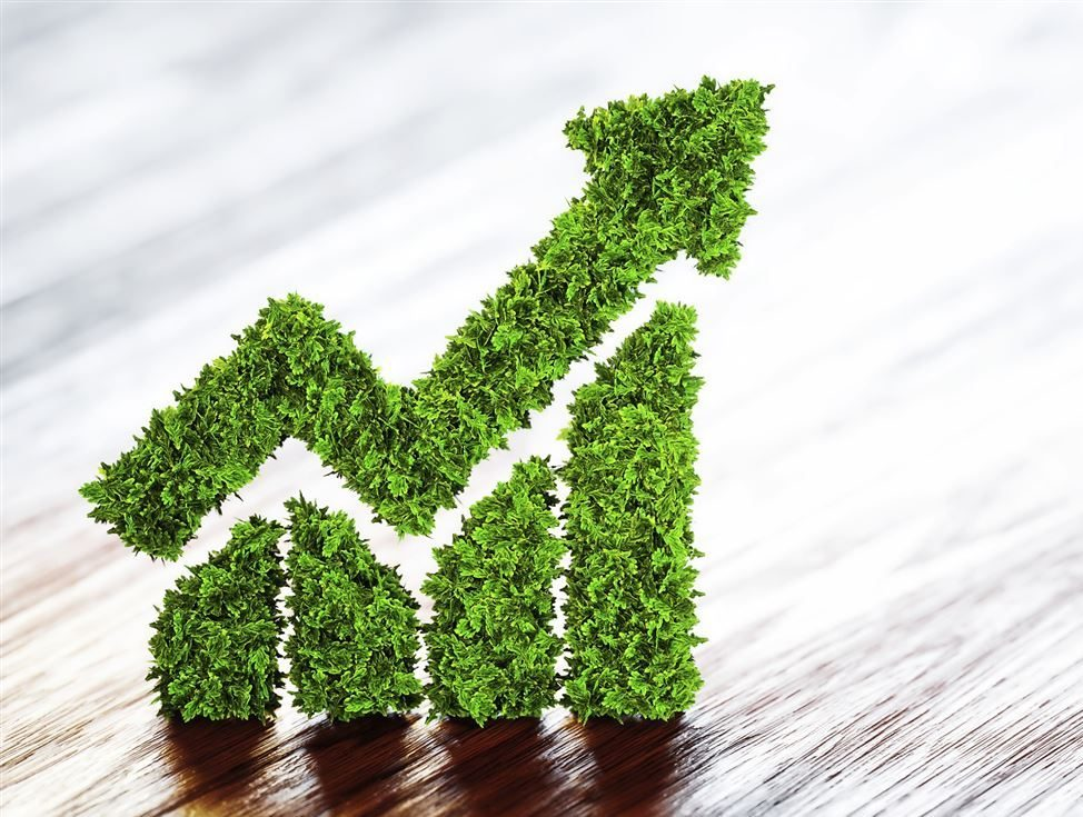 Socially Responsible Investing | Investing and Trading