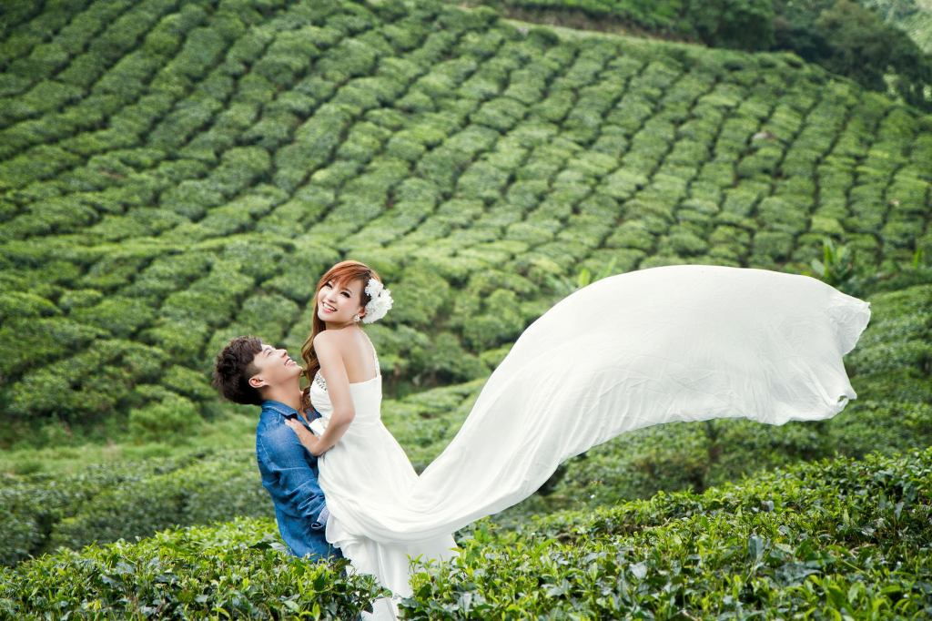 Munnar Honeymoon Packages - Munnar Honeymoon For Couples