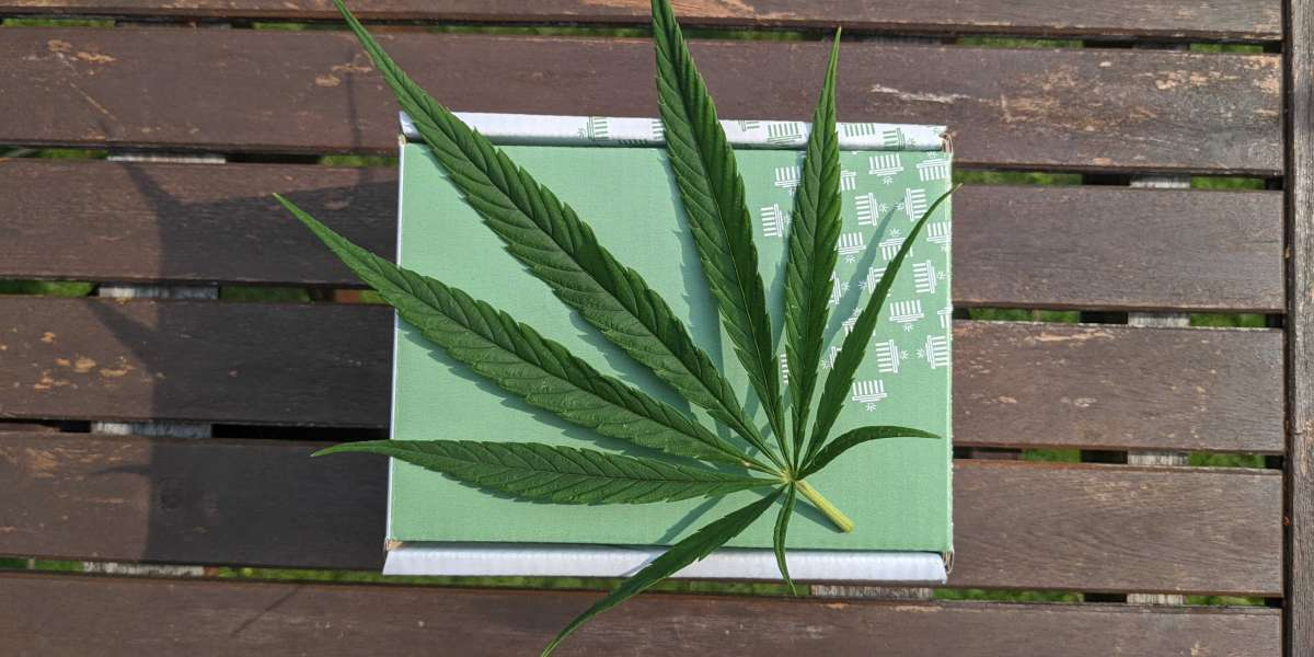 How To Buy The Hemp Wholesale Product?