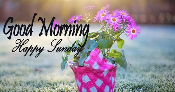 Wish With Good Morning Sunday Images - Best Image Website | Good Night Image For Whatsapp