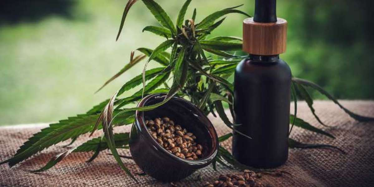 What You Need To Know About CBD And Its Products?