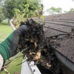 Gutter Cleaning Profile Picture