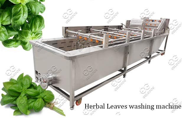 Automatic Herbal Leaves Washing Machine Vegetable Cleaning Line
