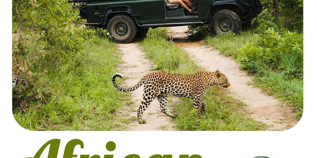 Tanzania Lodge Safari Holidays- Essential Things You Need to Know