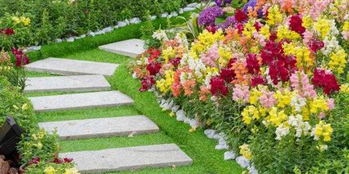 Lawn Care & Maintenance Tips Everyone Should Know