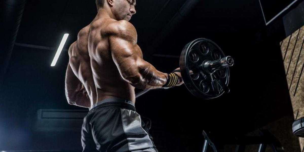 Best Testosterone Boosters For Bodybuilding Reviewed