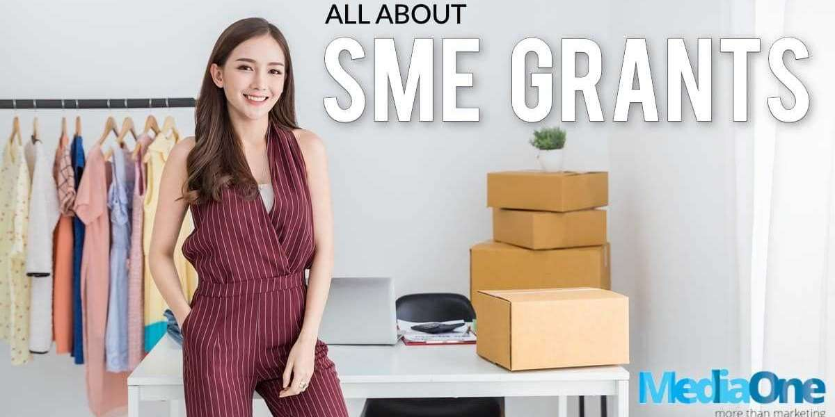 Detailed facts to read about SME grants
