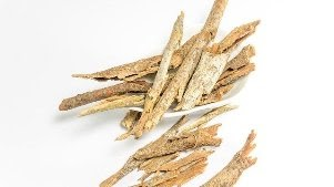 Effective Pyrogenium for homeopathy medicine benefits for health ~ Homeopathy with life