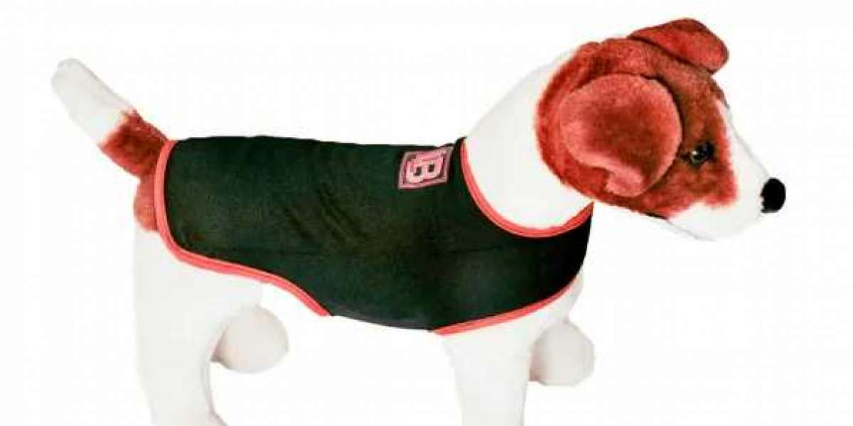 Benefits of Using the Best Anxiety Vest for Dogs