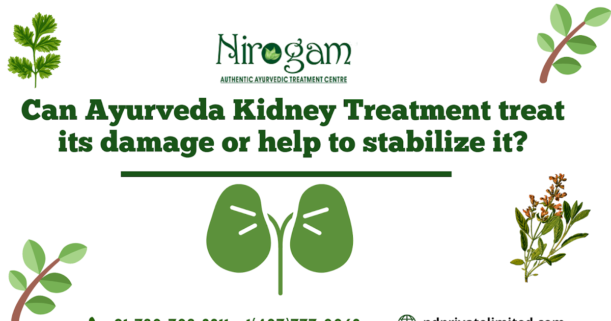Can Ayurveda Kidney Treatment Prevent its Damage or help Stabilize it?