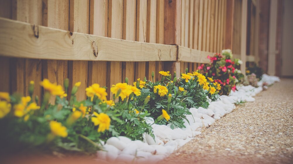 Best Landscaping & Gardening Services Near You - Austin — Optic Landscapes