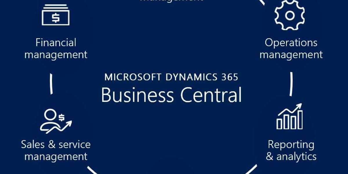 What are the different versions of Microsoft Dynamics 365 Partners