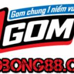 1gom vaobong88 Profile Picture