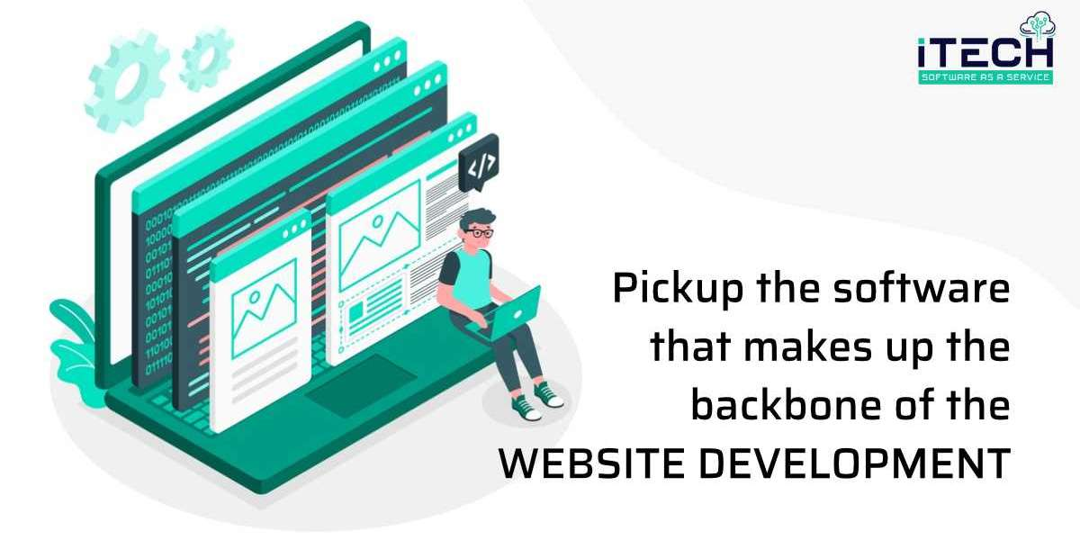Pickup the software that makes up the backbone of the website development