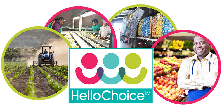 Get Real Flavors by Purchasing From Online Fresh Produce Market - Media/News Member Article By Hello Choice