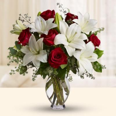Special Flowers To Give For The Whole Year