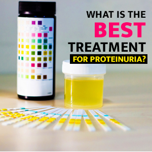 What is the best treatment for proteinuria?