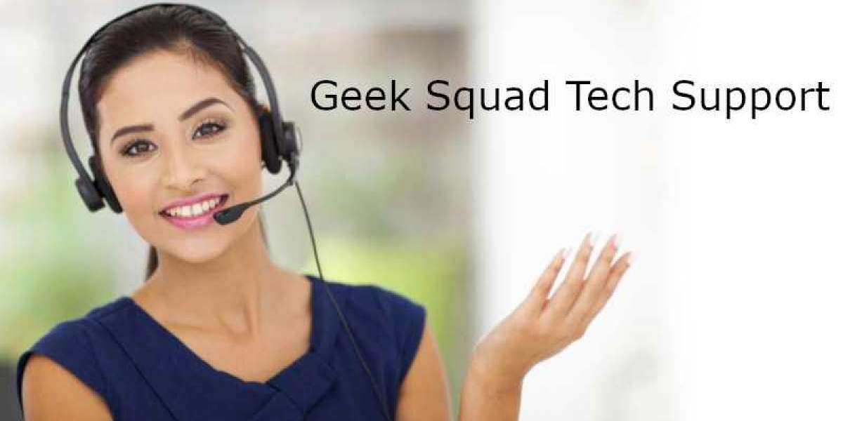 What are the Geek Squad Prices for different services?