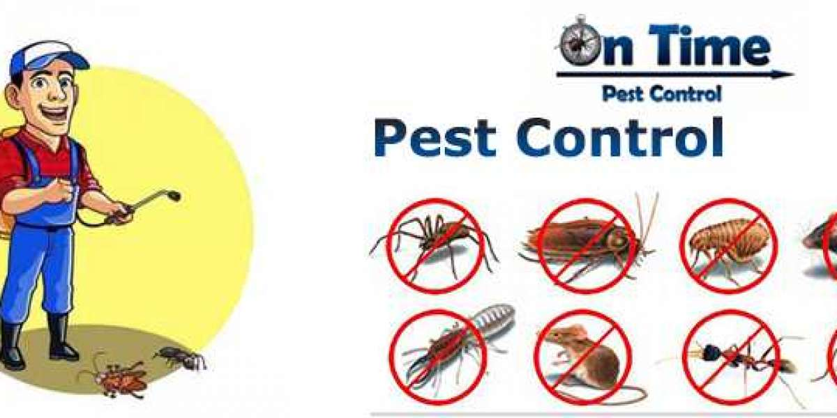 Is Pest Control Actually Important? Find the truth!