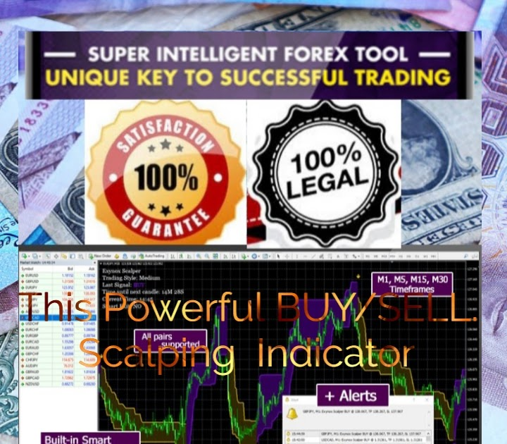 This Powerful BUY/SELL Scalping Indicator - Forex Trading For Beginners