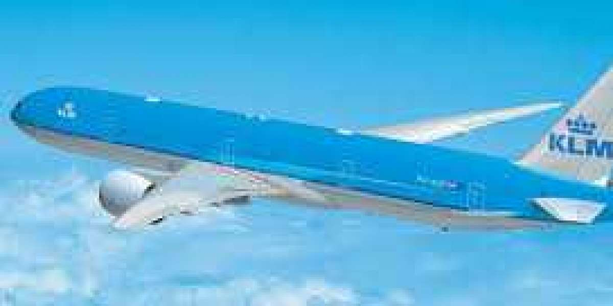 KLM Baggage Allowance: A guide for your next flight