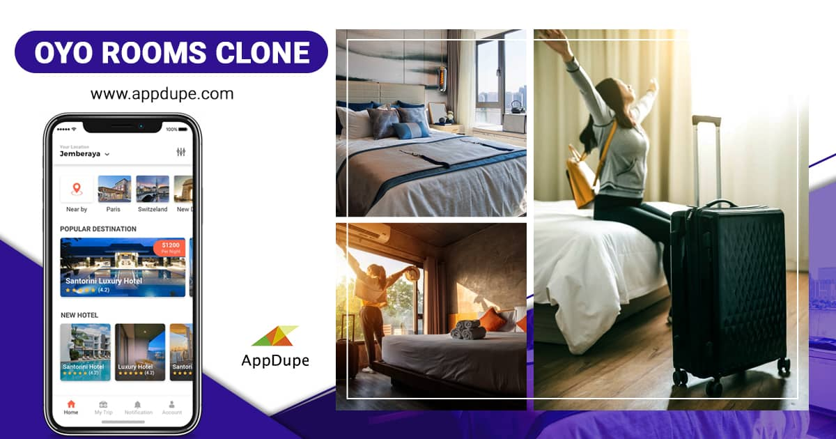 Dive into the best hotel booking business with Appdupe
