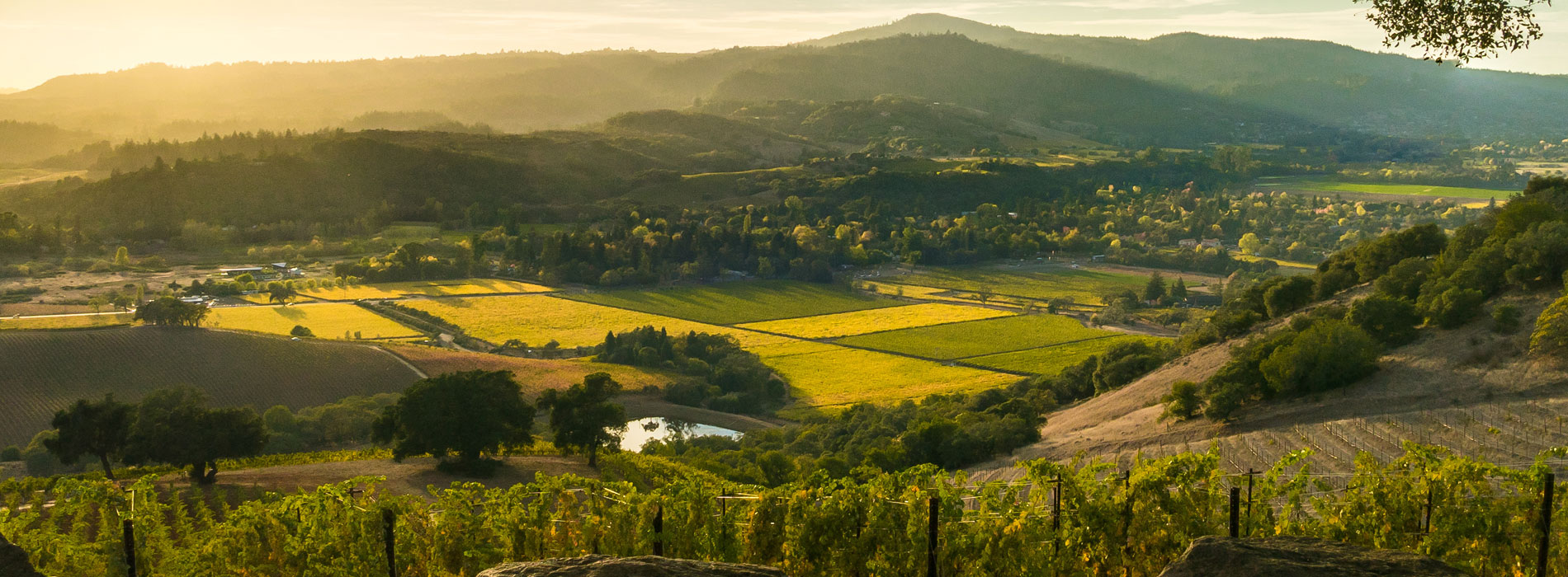 Home for Sale in Sonoma County | St Helena Real Estate