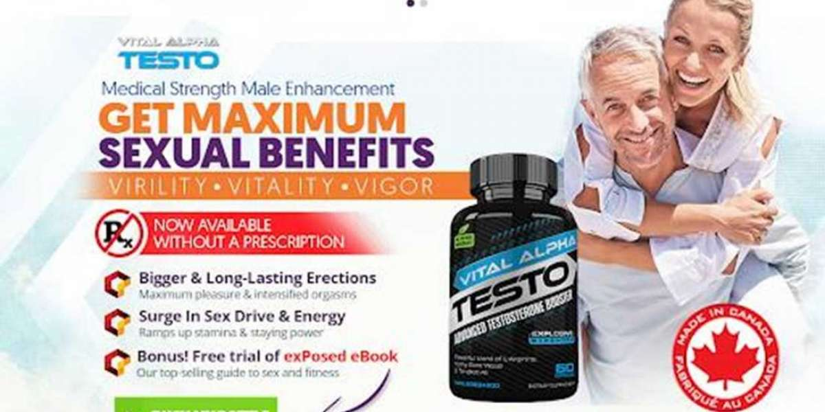 What Active Ingredients Have Been Used In Vital Alpha Testo Formula?