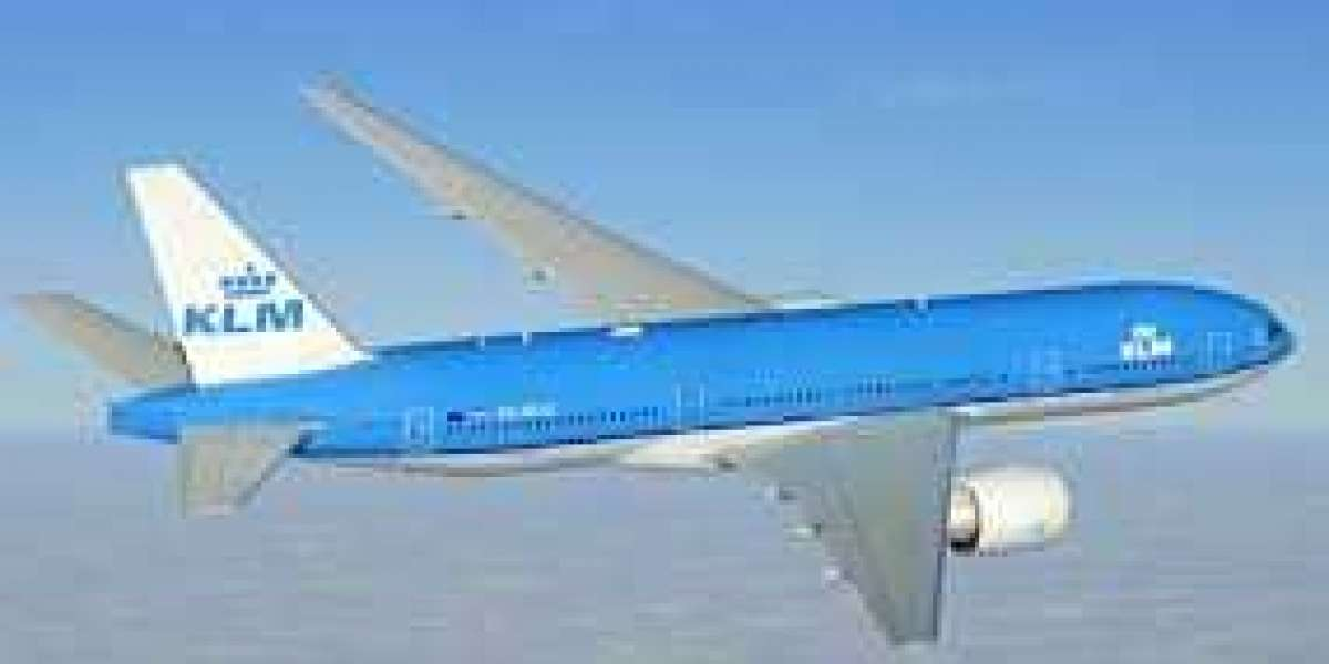 KLM Airlines Group Bookings