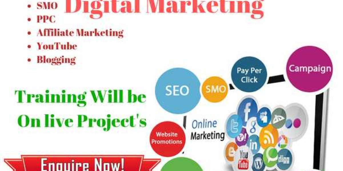Secure your digital career with the best Digital Marketing Training Institute in Noida