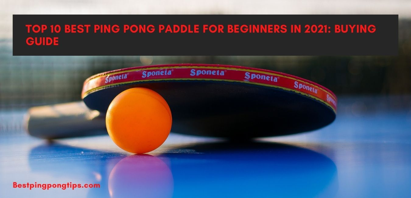 10 Best Ping Pong Paddle For Beginners In 2021: Buying Guide