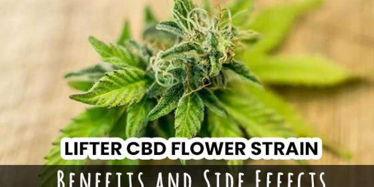 Lifter CBD Flower Strain – Benefits And Side Effects