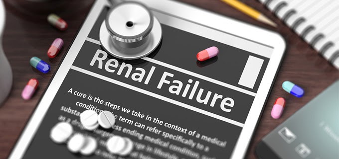 What are The Causes of Renal Failure?