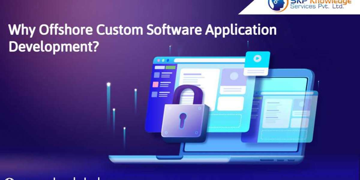Why Offshore Custom Software Application Development?