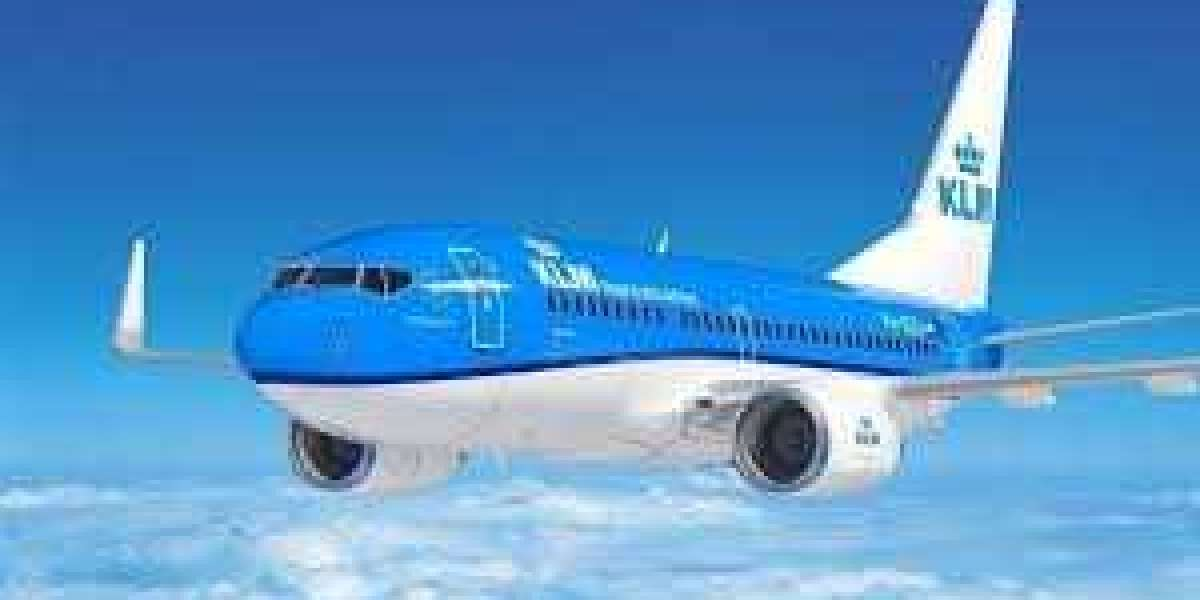 Instructions to Change Name On KLM Flight Ticket