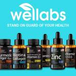 Wellabs INC Profile Picture