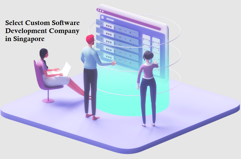 How to Select Custom Software Development Company in Singapore?