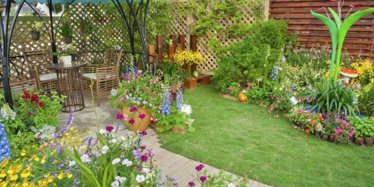 Grass Maintenance Tips for a Greener Yard