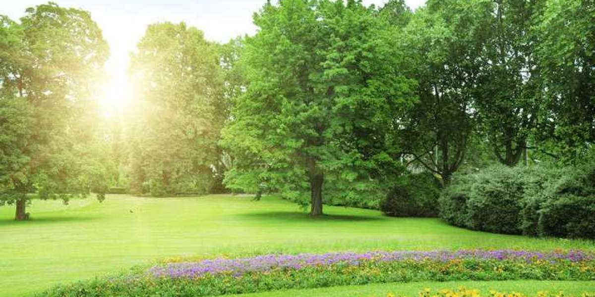 Best landscape maintenance Company in India