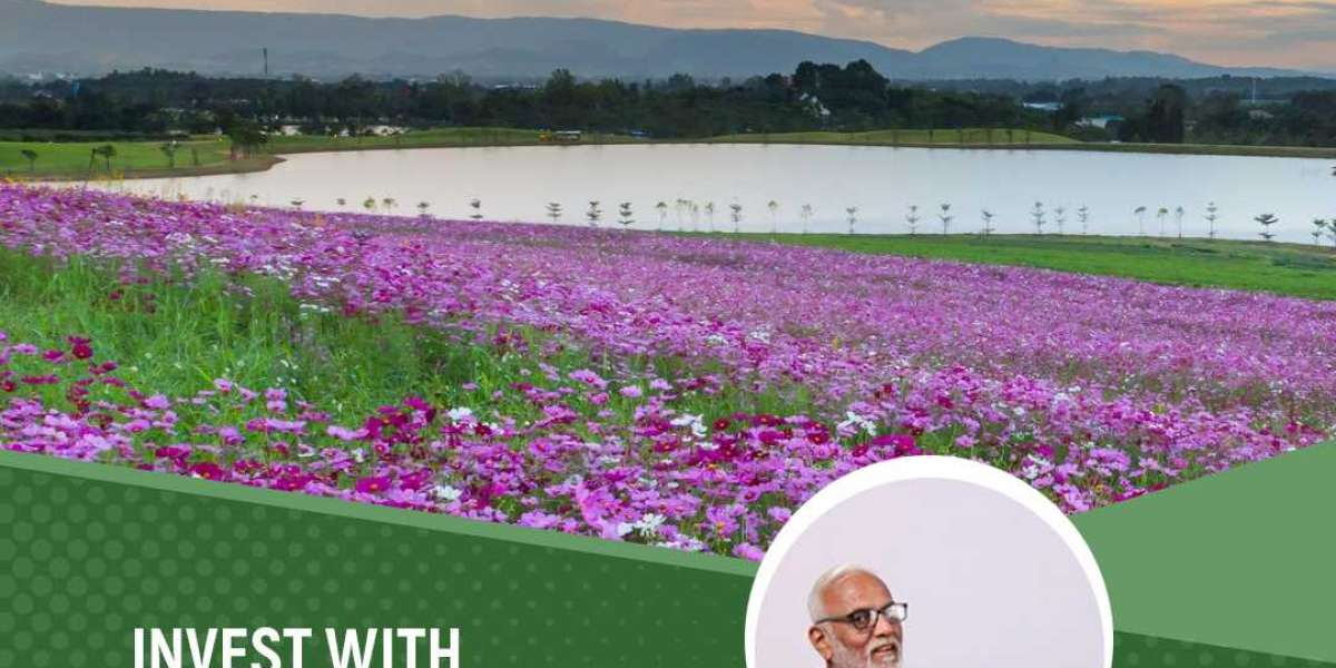 Thinking about Farm Lands in Bangalore?