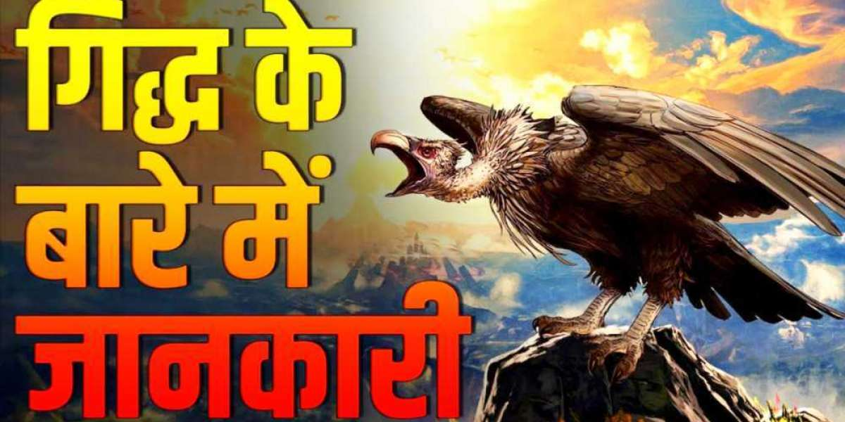 Information about vulture bird in Hindi