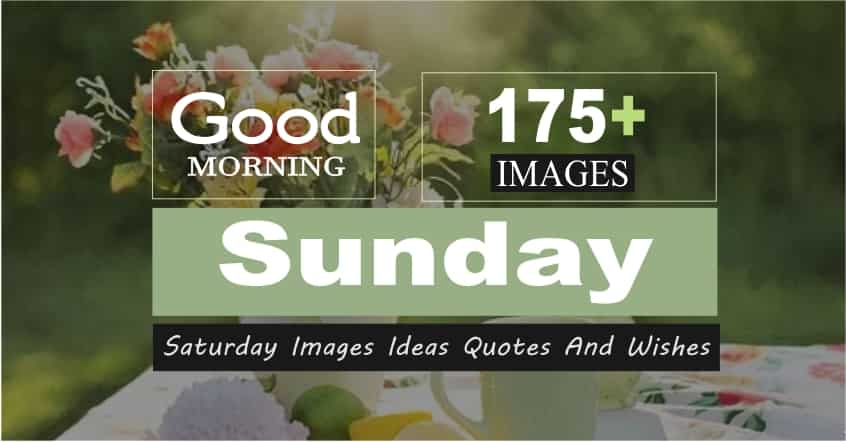 175+ Good Morning Sunday QuotesImages Ideas Wishes - 2021 Amazing Collection