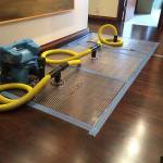 Timber Floor Drying in Sydney Profile Picture