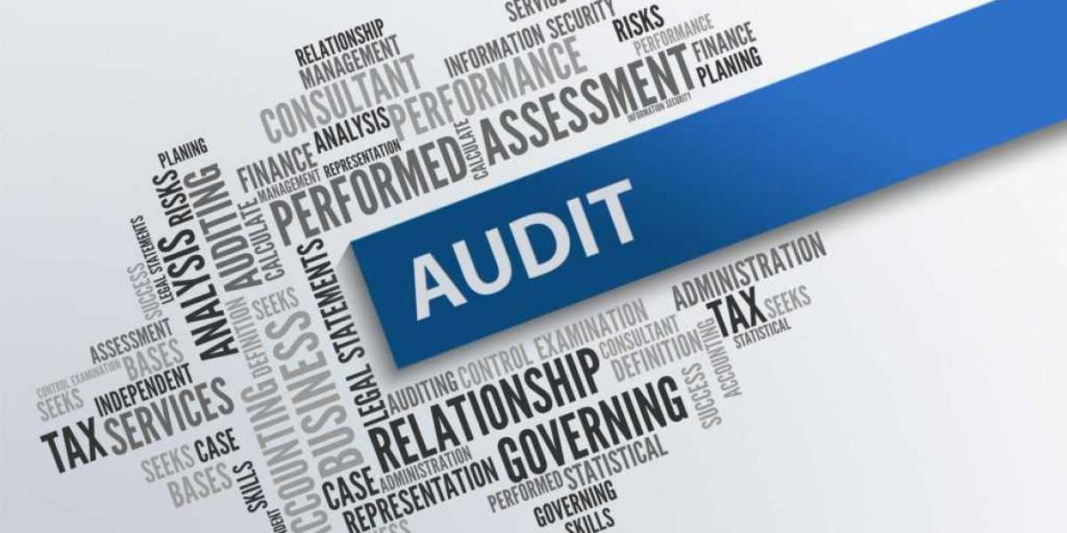 What Are The Different Auditing Services In Dubai?